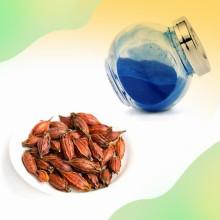 Polvo de extracto de Gardenia de bajo precio Gardenia Blue Powder