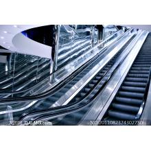 Otis Quality Heavy Duty Escalator with High Rise