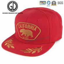 2017 nouveau chapeau acrylique de Snapback d'ère de haute qualité avec le logo brillant de broderie d'or