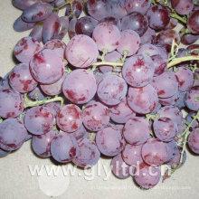 Bonne qualité de raisin frais rouge doux frais