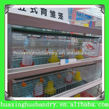 Day Old Chick Cage with Automatic Equipment