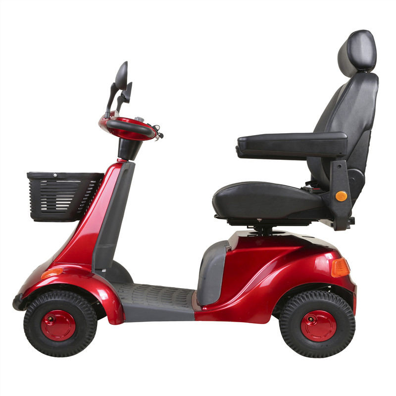 The luxury one-seat scooter (2)