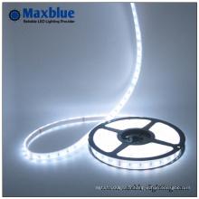 DC12V / 24V Flexible LED Strip Light avec ce 3 ans de garantie