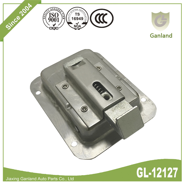 Stainless Steel Paddle Latch