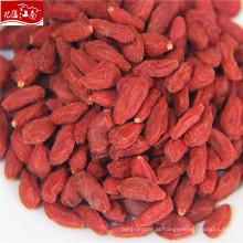 2017 ningxia vermelho fresco goji berries exportação sri lanka