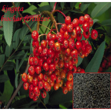Organic 45% Acid Controlled Slow Release Fertilizer