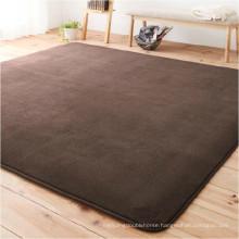 Coral fleece short pile carpet short pile shaggy carpet