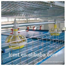 Les cages à volaille sont spécialement conçues pour les poulets de chair