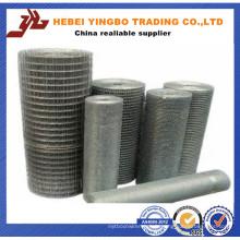 Fabriqué en Chine Weave SUS304 en acier inoxydable soudé treillis métallique