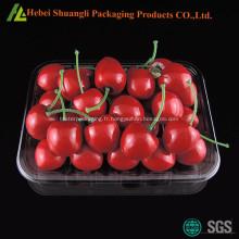 Plateau d'emballage de fruit en plastique rectangulaire