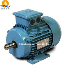Y2 series low & high voltage 3 phase electric motor