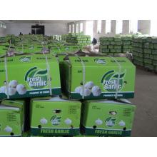 Wholesale Chinese Natural White Fresh Garlic