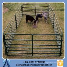 Barata profesional de alta calidad de la valla de ferrocarril de campo para la vaca