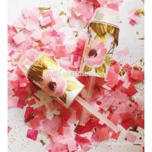 Pink Girl Sexe Révéler Party Push Pop Confetti