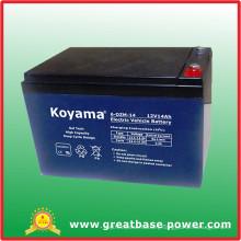 Top Quality E-Bike Storage Battery 6-Dzm-14 (14AH 12V)