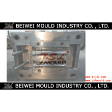 Plastic Injection Inline Filter Housing Body Mould