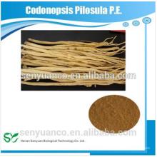 Codonopsis Pilosula PE