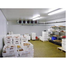 Commercial/Industrial Cold Room/Blast Freezer for Sale