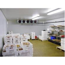 Sala fria de venda quente / sala de armazenamento frio / refrigerador