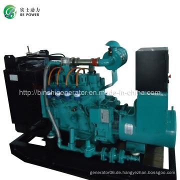 62.5kVA CNG Stromerzeuger Sets