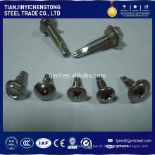 C1008 ~ C1035 parafusos de aço inoxidável