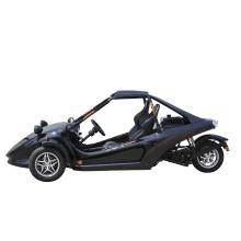 Factory Price ATV 250cc 3 Wheels Racing ATV Tricycle Quad