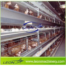 Leon series poultry cage feeding system