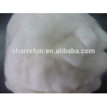 Dehaired Grade A prix de la fibre Angora, pur cheveux de lapin angora blanc 14.5-15.0mic / 32mm