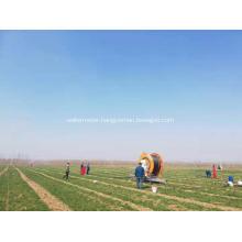 250 meter length hose reel irrigation