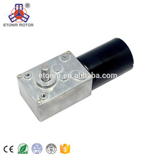 Etonm 12v small pmdc brushless worm gearboxes motor, 24v dc worm gear motor for Robotics