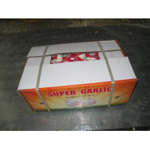 Carton Embalagem Exporing Alho Branco Fresco