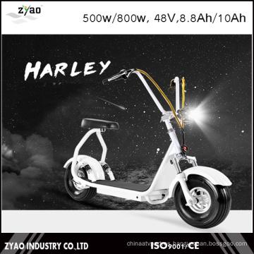 Ciudad de la movilidad Citycoco 800W Brushless Adulto Mini Scooter eléctrico 2 ruedas de la motocicleta eléctrica
