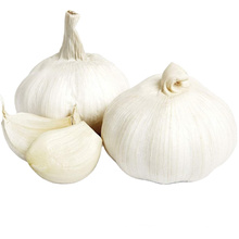 Wholesale Export Natural Chinese High Quality Fresh Pure White Garlic