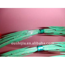PVC Coated Razor Barbed Wire(factory)