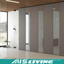 Custom Made Simple Style Bedroom Wardrobes with Mirror (AIS-W269)