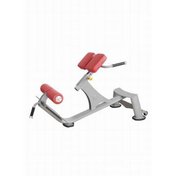 Precor Bodybuilding Equipment / Back Extension