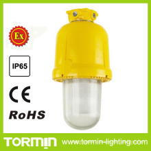 Explosion Proof Platform Light as New Products on China Market