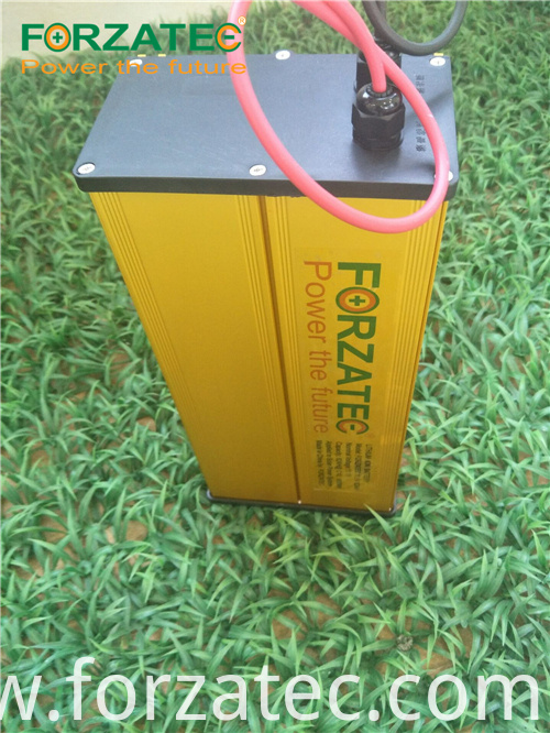 24V30Ah LiFePO4 battery