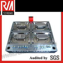 Plastic Thin Wall Injection Mould