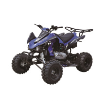 250cc Quad Bike, Racing ATV EEC Approval with 10inch Wheels