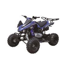 250cc Quad велосипед, гоночный утверждение ЕЭС ATV с 10 дюймовые колеса