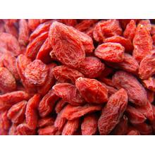 Counting Goji Berries Organik 180 Count