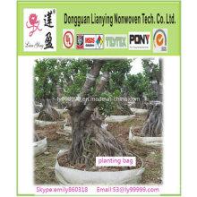 Sac de plantation d'arbre de jardin à effet de serre populaire