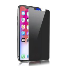 Privacy 9H Glasfolie für iPhone X