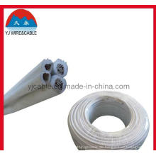 Spt Cable Lighting Wire 18 AWG Kabel 12 AWG Kabel CCA Draht Draht für hängende Lampe Spt Wire