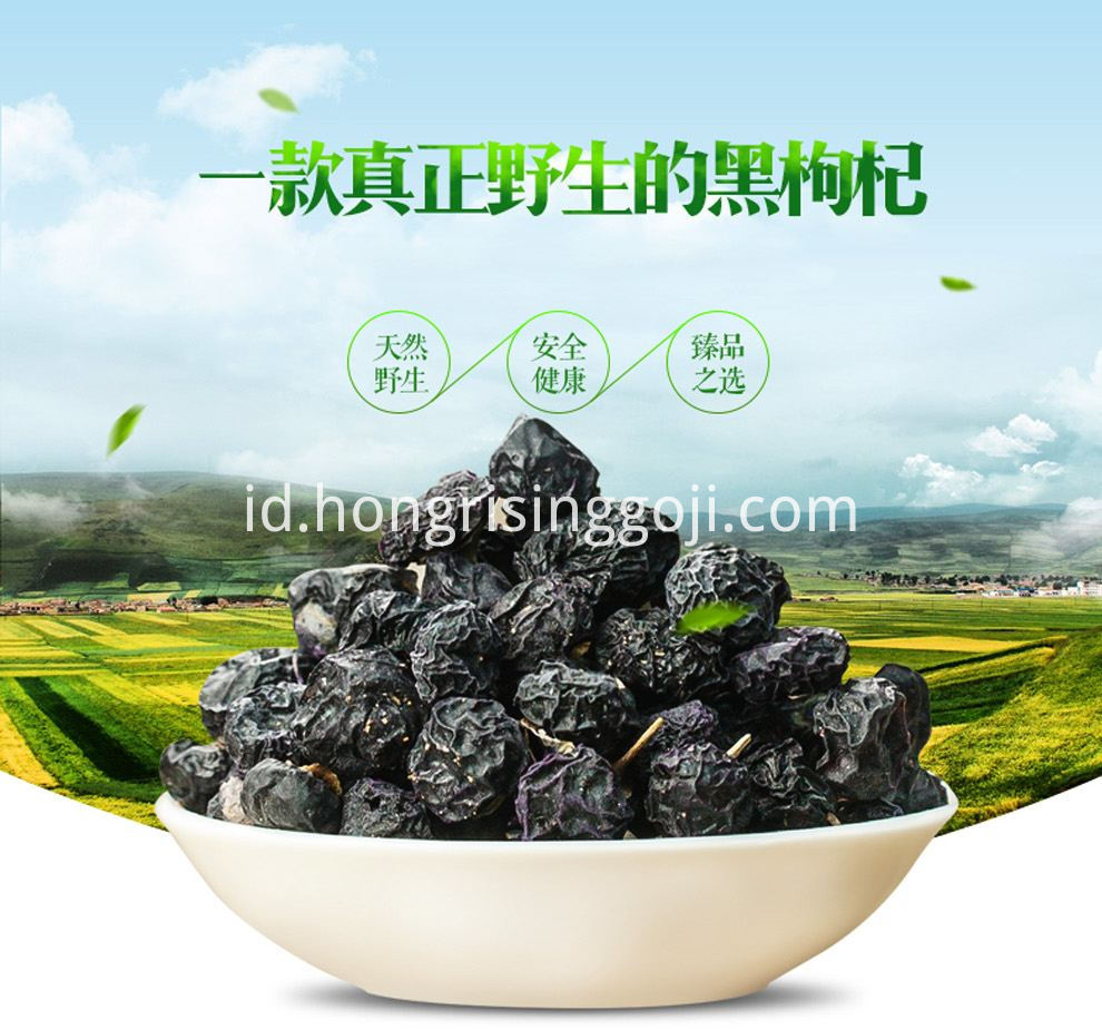 top quality black goji berry in bulk sale