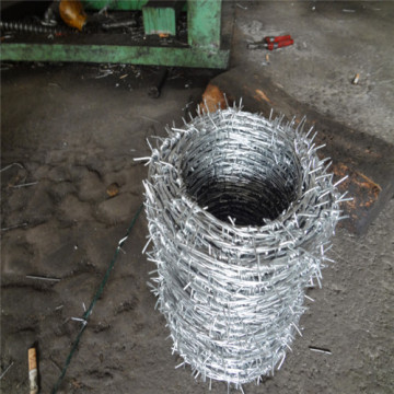 Barbed Wire In Barbed Wire