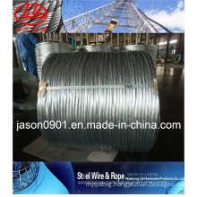 Galvanized Steel Wire (factory)