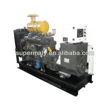 Digital ricardo generator set for sale