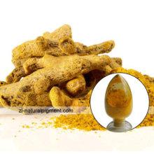 Заводские поставки Куркума Натуральный желтый 3 Куркумин